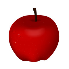 Vector illustration of delicious red apple