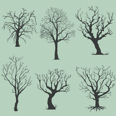 vector set of silhouettes of bare trees