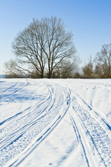 Fototapete - Country road in winter