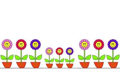 Flores de colores en macetas