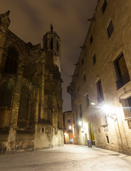 evening view of Gothic Quarter near Cathedral