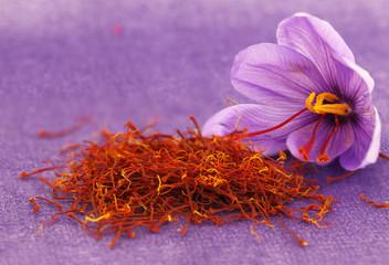 Foto auf Acrylglas Gewürze Dried saffron spice and Saffron flower