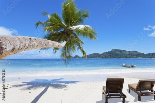 Plage paradisiaque des seychelles photo libre de droits - Image de plage paradisiaque ...