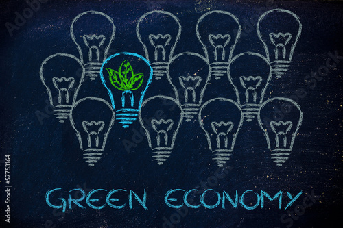 idea to implement green economy in Green economy worth of the green & circular economy the aim is to implement a platform for the development of a green economy.