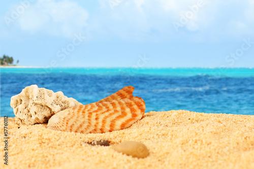 Обои для рабочего стола море солнце песок