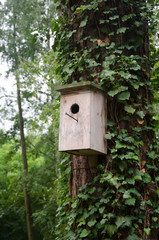 A wooden birdhouse hung on a tree