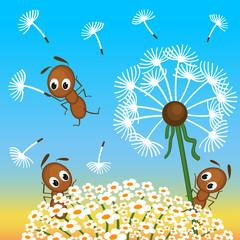 ants and dandelion -  vector illustration