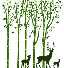 Birch Tree with Deer