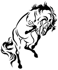 rearing horse tattoo