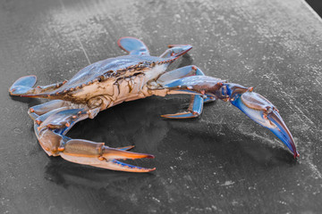 Blue crab on the table