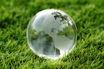 Glass globe in the grass - Environment concept