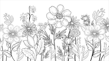 Flowers, outline