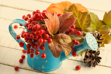 Autumn berries in watering can