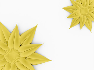 Two yellow flowers isolated