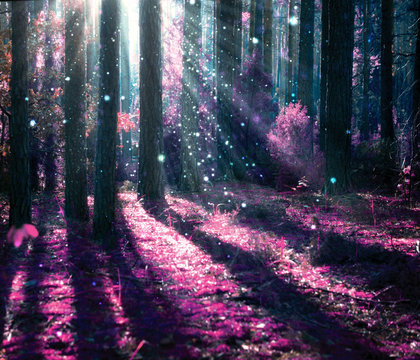 Fantasy Landscape. Mysterious Old Forest.