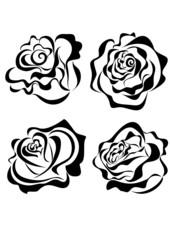 Vector stylized roses isolated on white background
