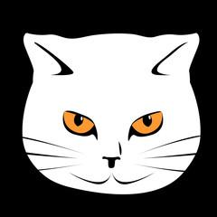 cat's face, vector illustration