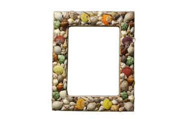 picture frame with seashells on white background