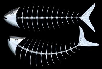 Metallic Fish Skeleton. Clipping paths