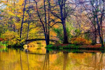 Wall Mural - Autumn - Old bridge in autumn misty park