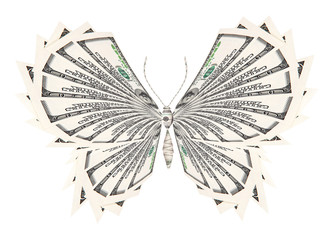 concept of successful butterfly