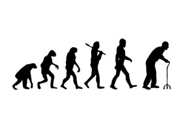 Evolution Old2