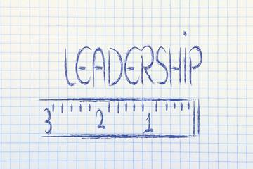 measure your leadership