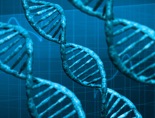 3d DNA structure
