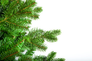 Christmas tree in front of a white background