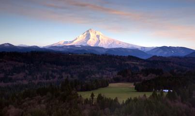 Lush Valley Leads To Mountan Landscape Mount Hood Cascade Range