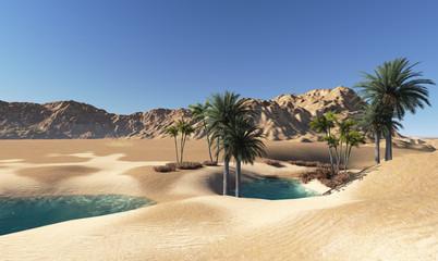 Photo sur Toile Desert de sable Oasis