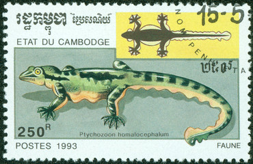 stamp printed in Cambodia shows Kuhl's Flying Gecko