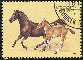 stamp printed in Kyrgyzstan showing horse with filly
