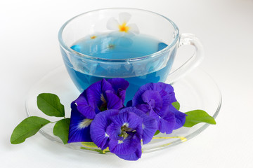 Butterfly pea Tea on White Background