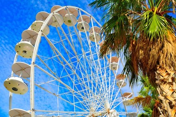 Ferris wheel and palm trees