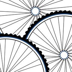 Bicycle wheel set isolated on white