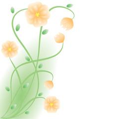 Flowers bloom .