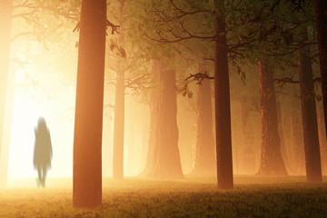 Deep Forest Fairy Tale Scary Scene Yurei Ghost 3D render