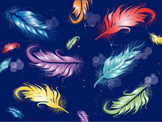 color feathers on dark blue background