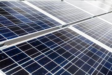 Solar Power Station ecology