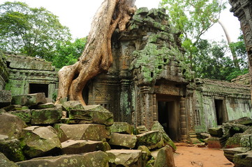 Acrylic Prints Historical buildings Ancient Ruin of Ta Prohm Temple in Angkor Thom, Cambodia