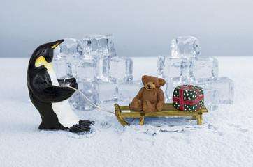 Penguin pulling sled