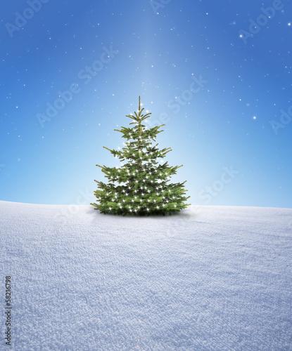 weihnachtsbaum im schnee stockfotos und lizenzfreie. Black Bedroom Furniture Sets. Home Design Ideas