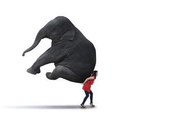 Isolated woman carrying big elephant