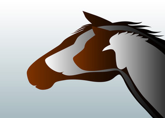 Veteriner logosu  ( versiyon 3 )