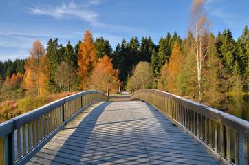 Holzbrücke Brücke im Herbst