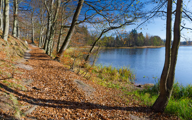 Autumn pathway in lake scenery