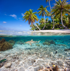 Fototapete - Tropical island under and above water