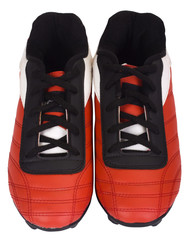 Close-up of a pair of sports shoes