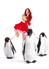 Pin-up fashion woman with penguin